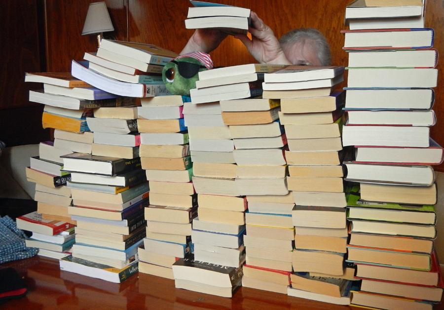 Cindy organizes our books