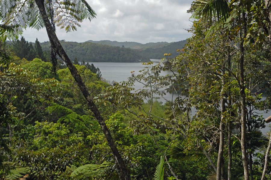 Puerto Rico scenic drive