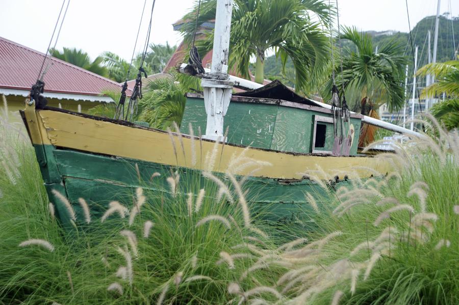 Grass bottom boat
