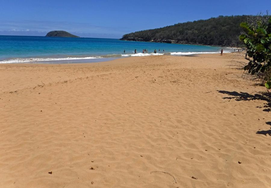 Death in Paradise beach - Grande-Anse Beach - Plage de Grande-Anse