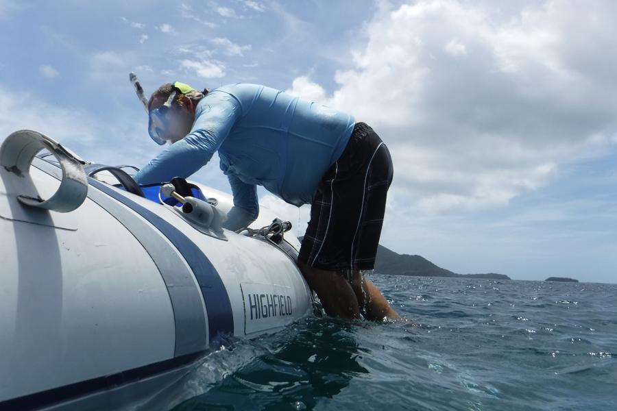 Up-N-Out dinghy ladder