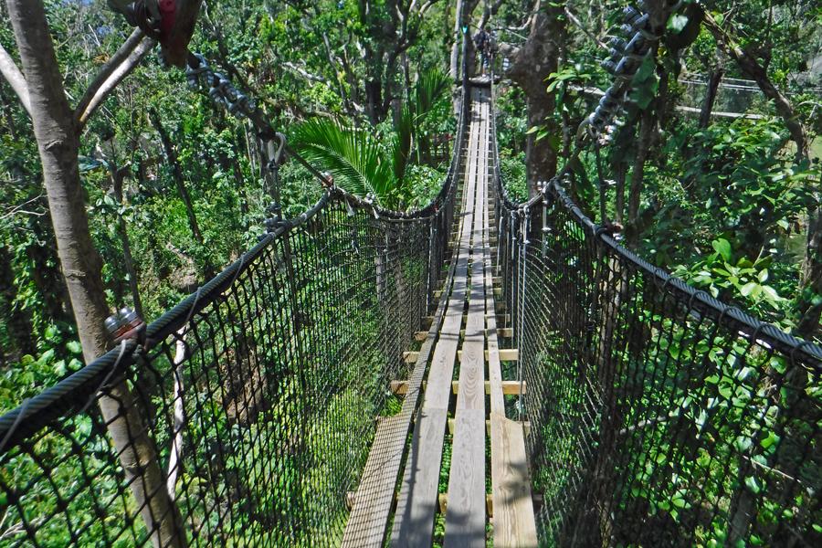 Zoo de Guadeloupe au Parc des Mamelles