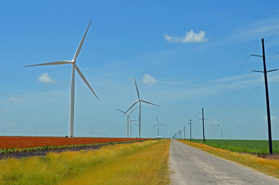 Windmills and power lines on the coastal plains