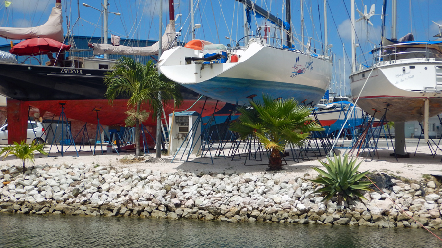 A different slant on the thought: Palm tress and boats