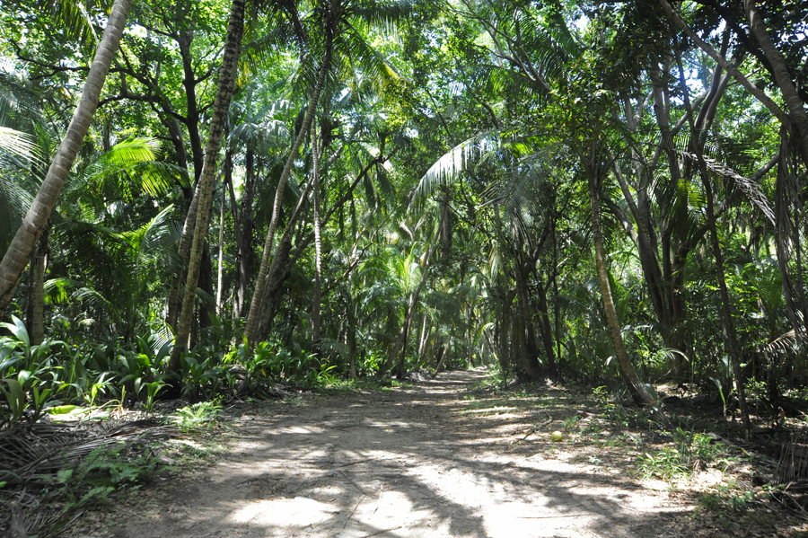 Humacao Nature Reserve