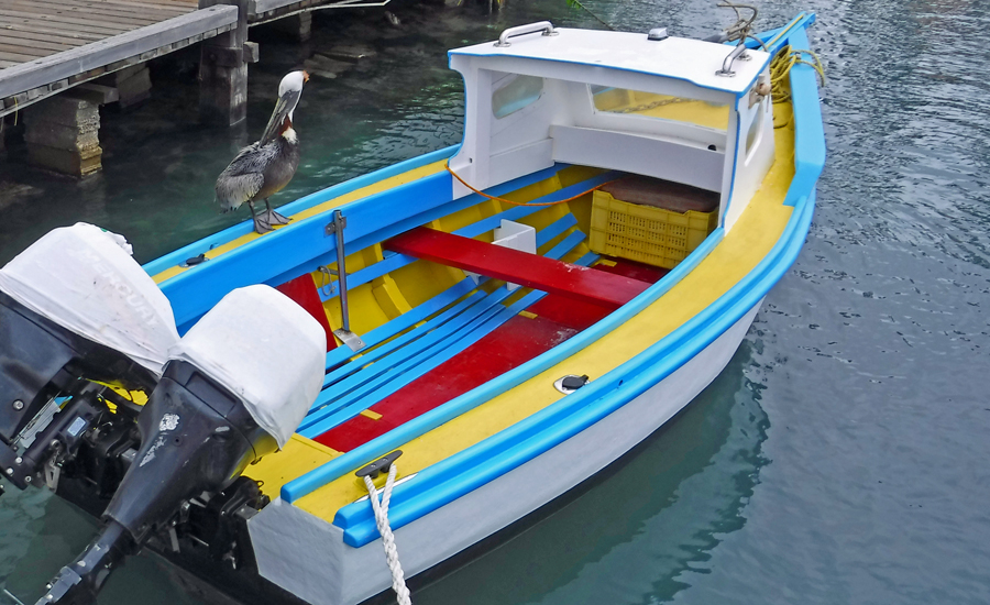 At leas the pelican is facing the right way to not soil this colorful fishing boat