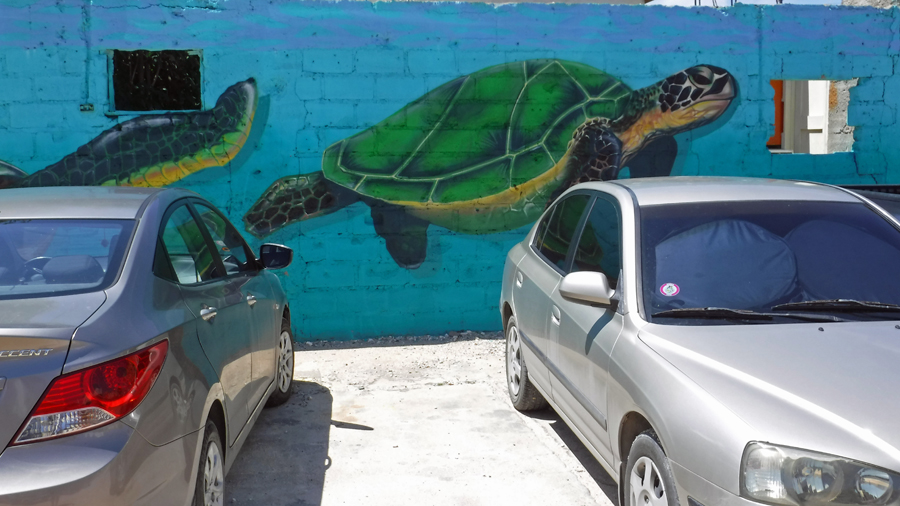 """Remember we parked the car by the turtle"""