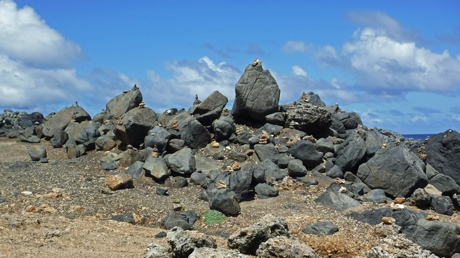 Rock stacks left by tourist are becoming a problem for lizards. It's making them homeless (they live under rocks)