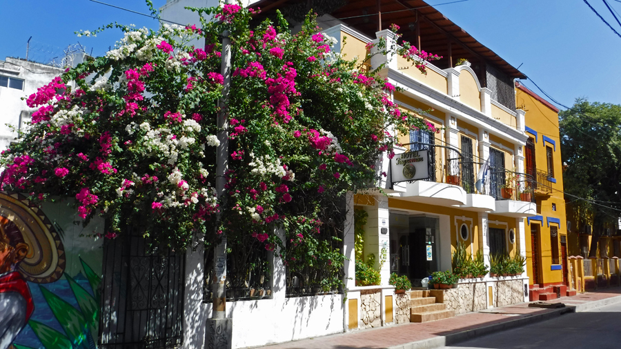 Hotel Tayromar - Santa Marta has a lot of small boutique hotels like this one