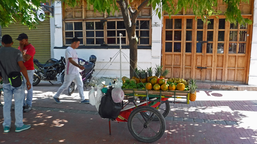 The best place to buy fresh fruit are the small wagons located throughout town