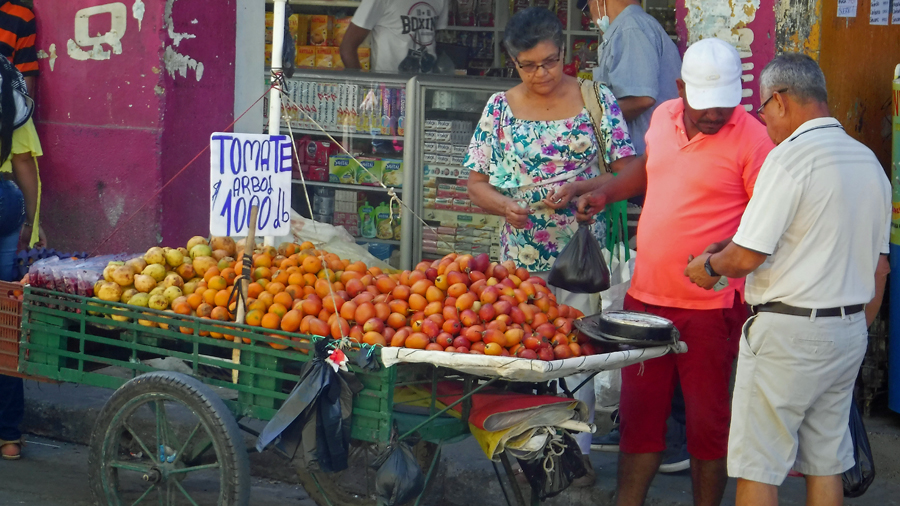 Fresh tomatoes for sale. Note the price is in lbs. Colombia is metric but food is still sold by the pound. (31¢ per pound)