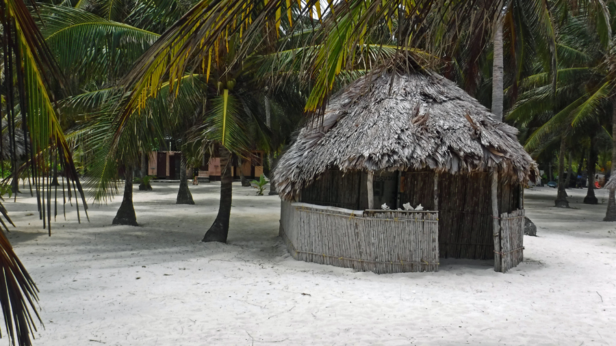 A hotel cabin consists of a small table and hammocks
